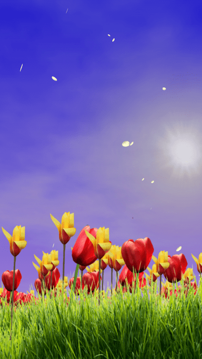 Spring Scene Free - Android Apps on Google Play
