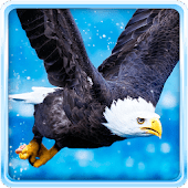 Bald Eagle Wallpaper - Android Apps on Google Play