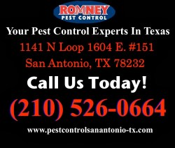 Small Of Romney Pest Control
