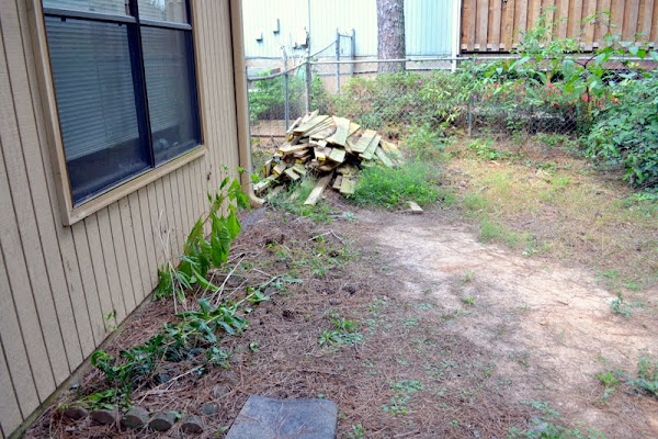 backyard makeover before