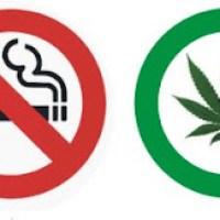 Tabac o Maria ? Article de Jaume Funes