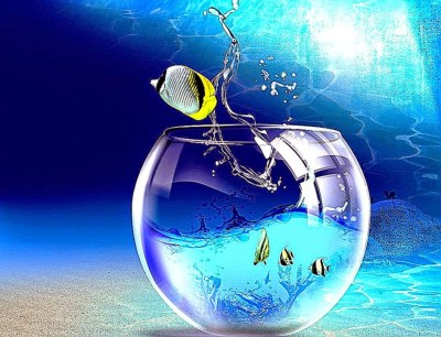 Watery desktop 3d animated wallpaper screensaver v3.995 : conhiores