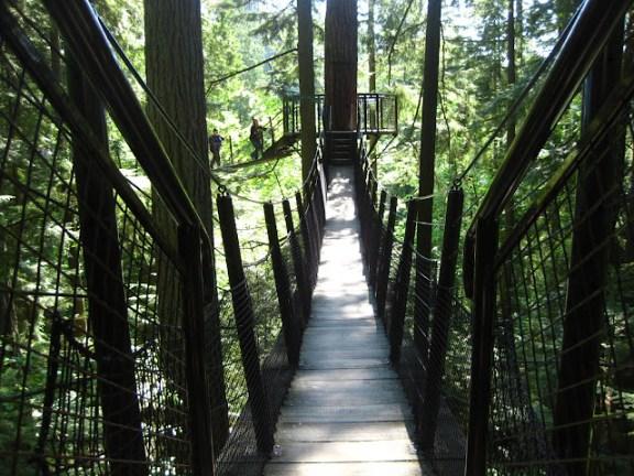 Capilano Suspension Bridge Park, Treetops Adventure