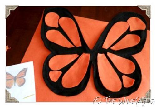 butterfly_wings_4
