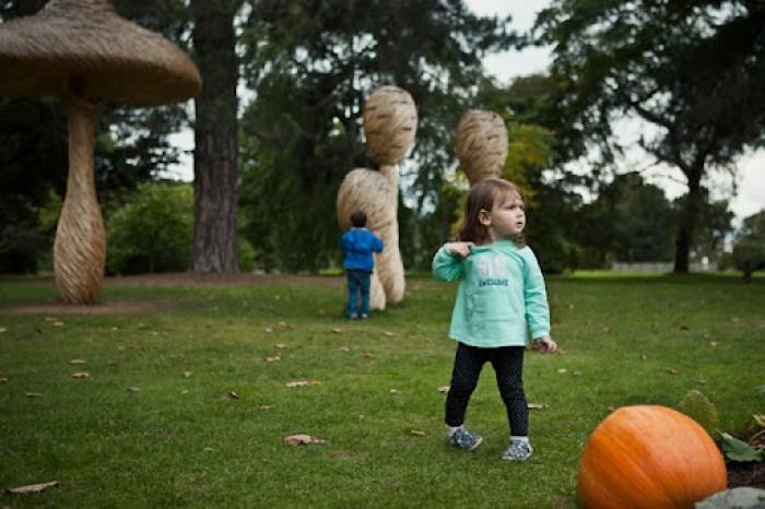 Kew Gardens Pumpkins 25