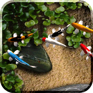 App Koi Free Live Wallpaper APK for Windows Phone   Download Android APK GAMES & APPS for ...