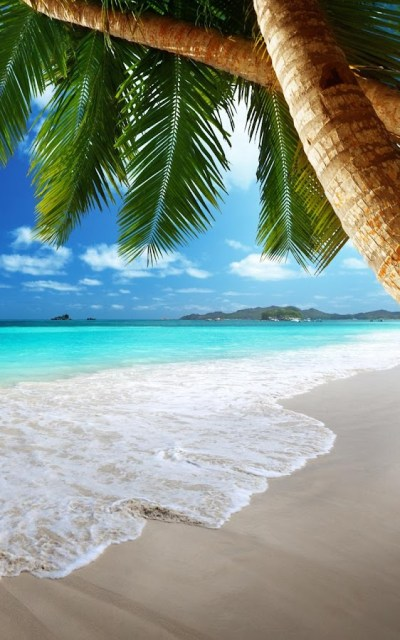 Tropical Beach Live Wallpaper - Android Apps on Google Play