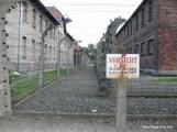 Auschwitz Security Fences-4.JPG