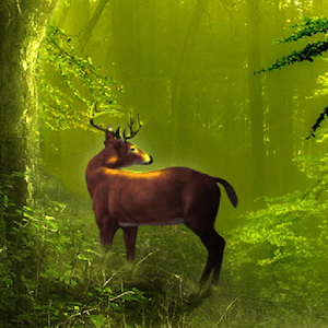 Galaxy Deer HD Live Wallpaper - Android Apps on Google Play
