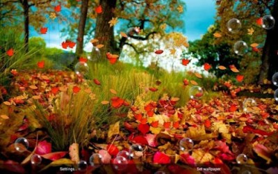 Autumn Live Wallpaper - Android Apps on Google Play