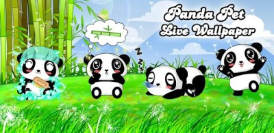 Panda Pet Live Wallpaper Free - Android Apps on Google Play