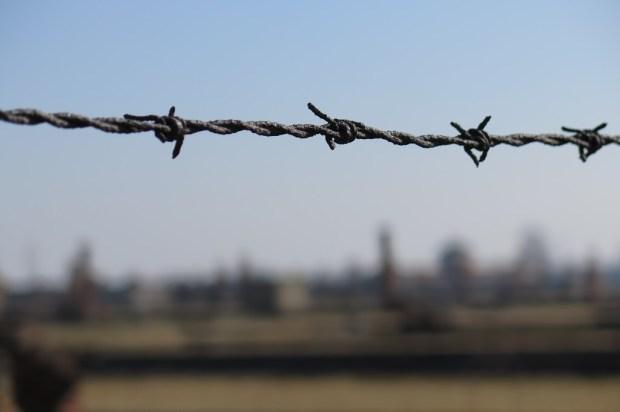 Welch trostloses Leben müssen die Menschen hinter diesen Zäunen gefristet haben?