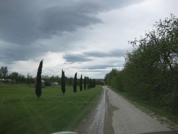 Driveway to Two Paddocks