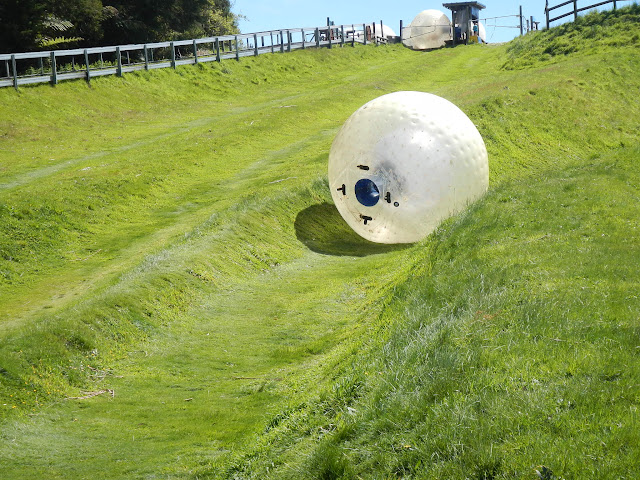 The zorb track in Rotorua