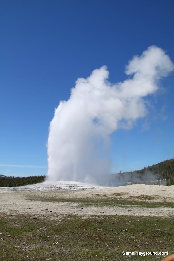 Old Faithful the dependable Yellowstone geyser