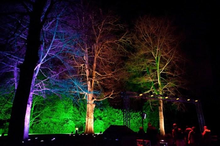 Christmas at Kew 30