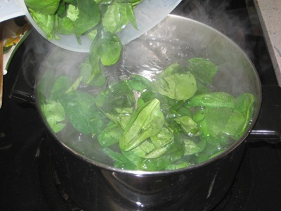 spinach egg curry 017