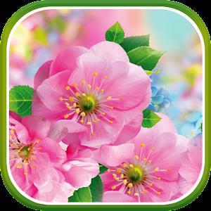 Download Spring Flowers Live Wallpaper Google Play softwares - amVsJZmHYJDD   mobile9