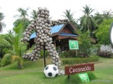 Coconut Football Player-2.JPG