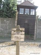 Auschwitz Security Fences-2.JPG