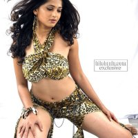 sexy telugu actress anushka glamour photos - part 3