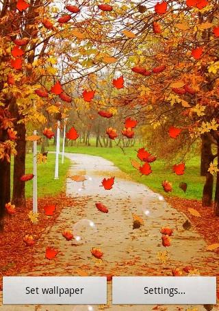 Herbst Frei Live Wallpaper – Android-Apps auf Google Play
