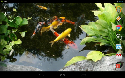 Magic Touch: Realistic Koi Live Wallpaper - Android Apps on Google Play