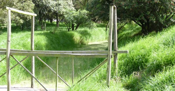 Puente en el Humedal Tibanica