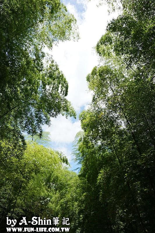 南投竹山遊-竹山天梯-太極峽谷-青龍瀑布15