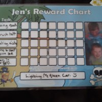 Personalised Reward Charts, A review