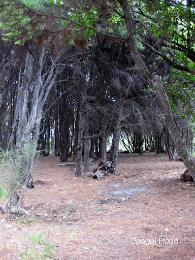 Twelve Mile Delta DOC campsite, Otago