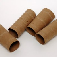 Toilet paper tube mini- campfires
