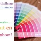 libelul-banner-challenge-nuancier-201112