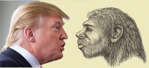 Entrada Homo Sapiens en America Donald-trump-homo-naledi