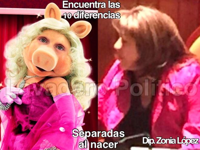 zonia-lopez-diputada-diferencias-lavadero-politico