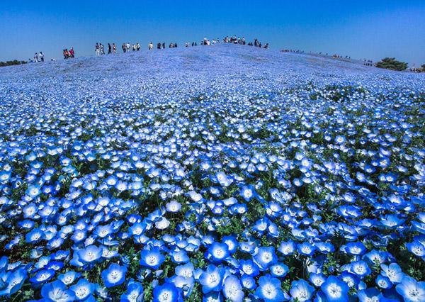 fotó: Doris Landertinger, Japán