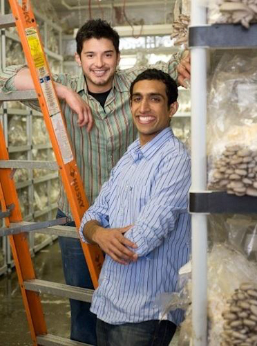 Nikhil Arora and Alex Velez, BTTR mushrooms