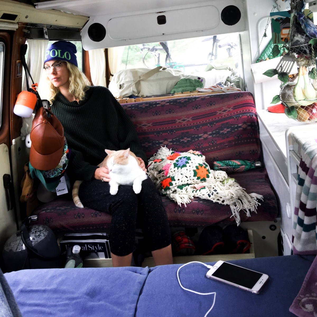 How we travel with a cat in our van