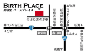birth-place-map