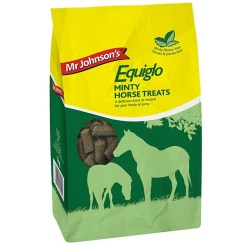 equiglo minty treat