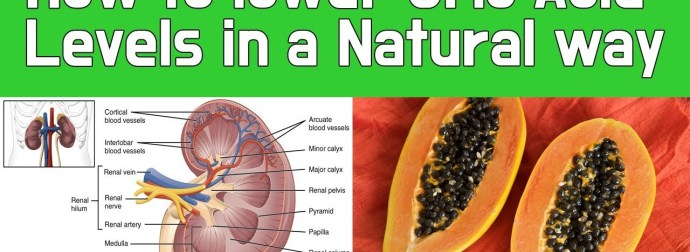 How to lower Uric Acid Levels in a Natural way