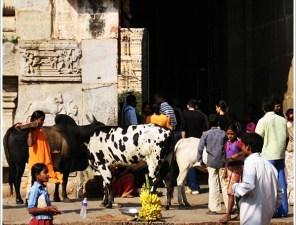 Hampi Virupaksha Temple Entry