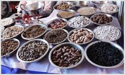 Pushkar Fair Mela 2014 Rajasthan
