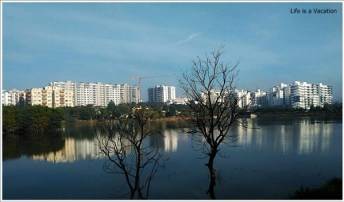 Bangalore Lake Kere Habba Sarjapur Road