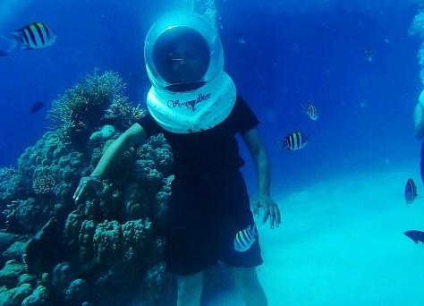 Adventure Activity in Andaman - Sea Walk