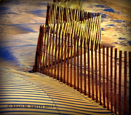sand dune fence on the Jersey shore