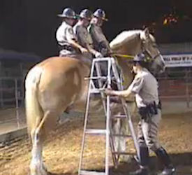 Hercules the Police horse ridden by three officers at California State Fair 2008