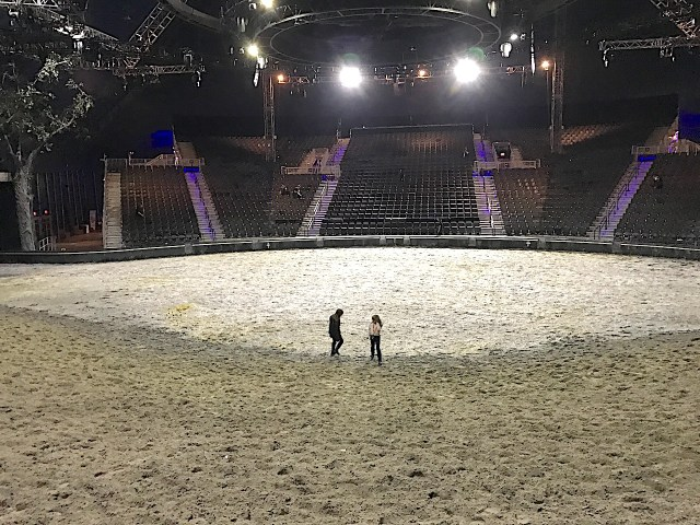 Cavalia Odysseo Ready for a close up