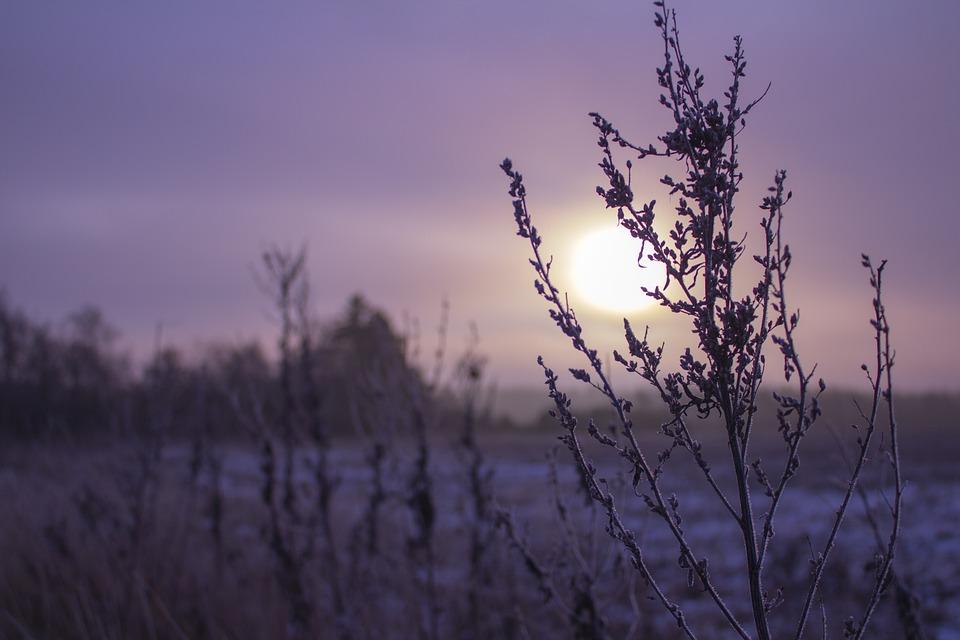 sunrise-758335_960_720