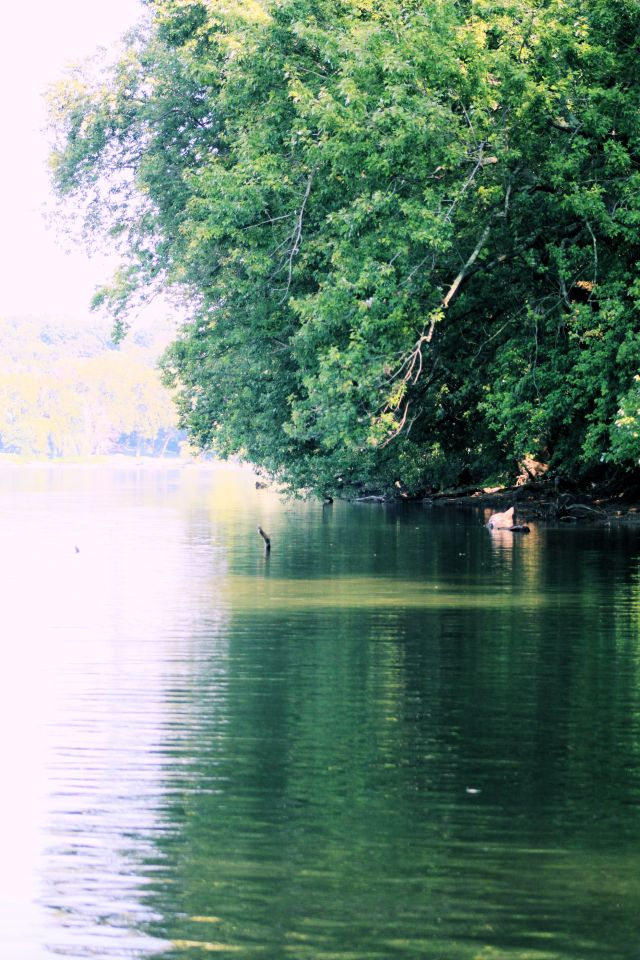 10-sept-16-river-view-2